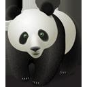 Panda_128